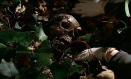 Женщина в саду – фото момента из 13 серии 1 сезона сериала Кости